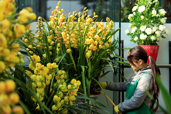 Horticulture Workers